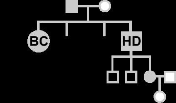 BC-CONNECT-HD-logo